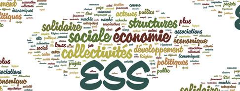 cours economie sociale et solidaire pdf